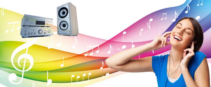 Multimedia Audio IC - Princeton Technology Corporation